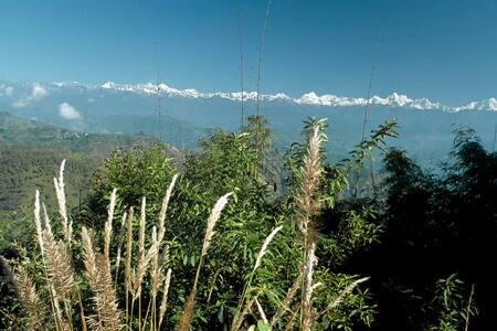Himalayan Retreat Cottage - Bhaktapur