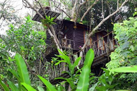Barbarian Honeymoon Tree House