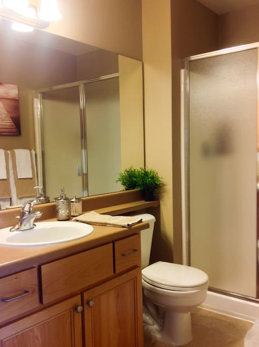 Private Master Bath with shower