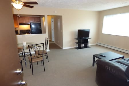 UC, Hospitals, downtown on a budget - Cincinnati - Apartment