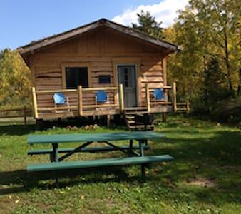 """Catskill Mt. """"Equinuck"""" Cabin - Kabin"""