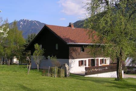Villa French Alps near Geneva - Chevenoz
