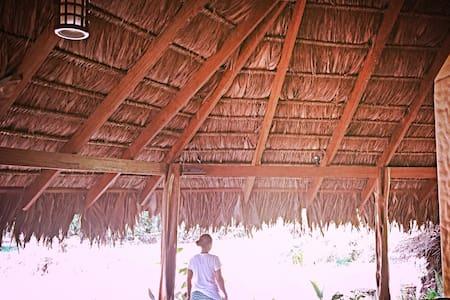 Palapa Hut @ La Chosa del Manglar - Puerto Jiménez - Autre