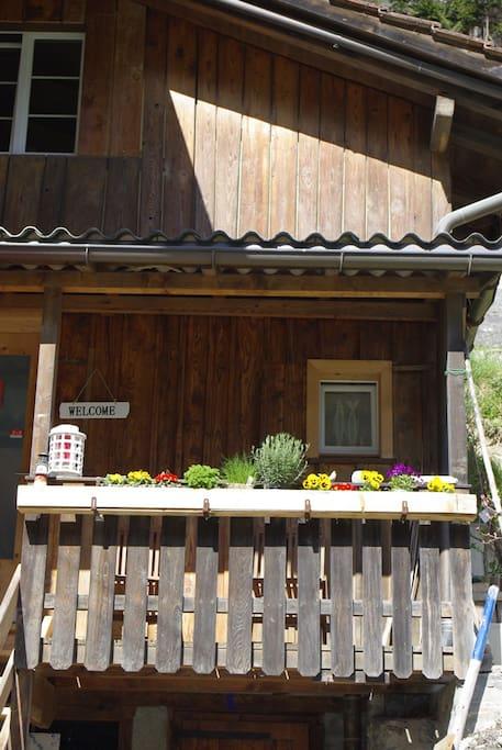 Der Gäste-Eingang