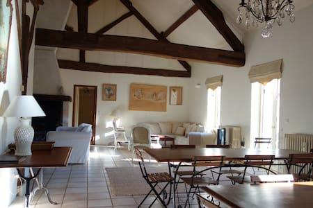 Le Limodin Manor House  - Casa