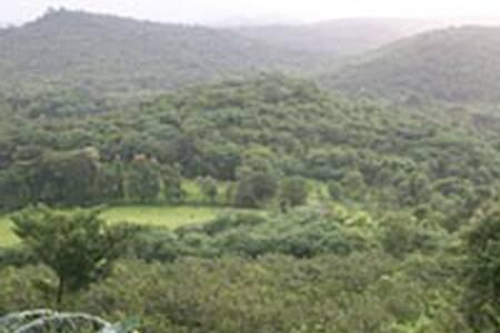 Jungle Book Konkan - KOKANGABHA 6 - Ratnagiri - Bed & Breakfast