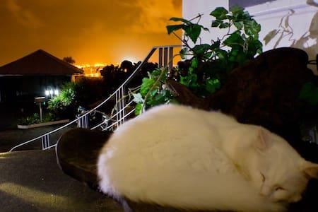Hilltop Legacy | Volcano Room - Hilo - House