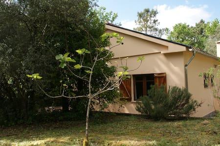 Cottage near River Beach - Arcos de Valdevez - Casa