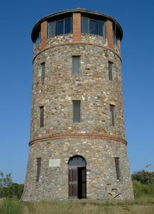 Ancient Tower In Nature Reserve  - Château