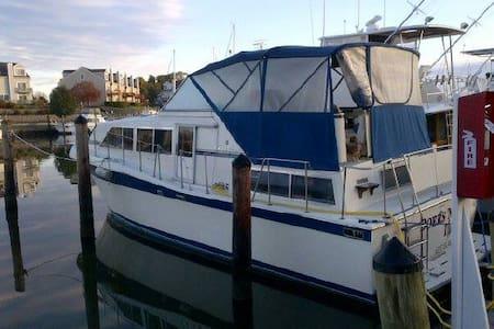 Motoryacht rental - Loď