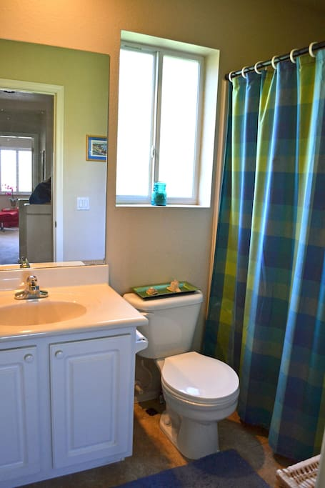 This is the guest bathroom.