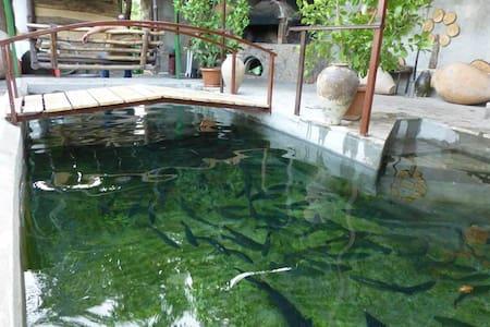 Дом для отдыха с родниковой водой (Aghbyuri achq) - Garni - Bed & Breakfast