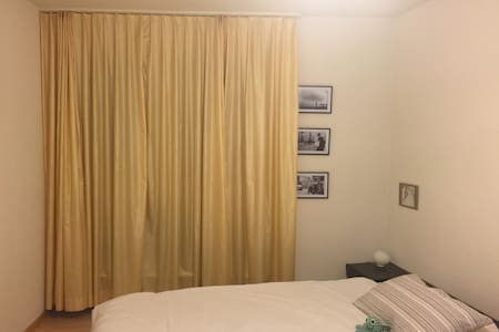 Private double bedroom near the city centre - Zürich