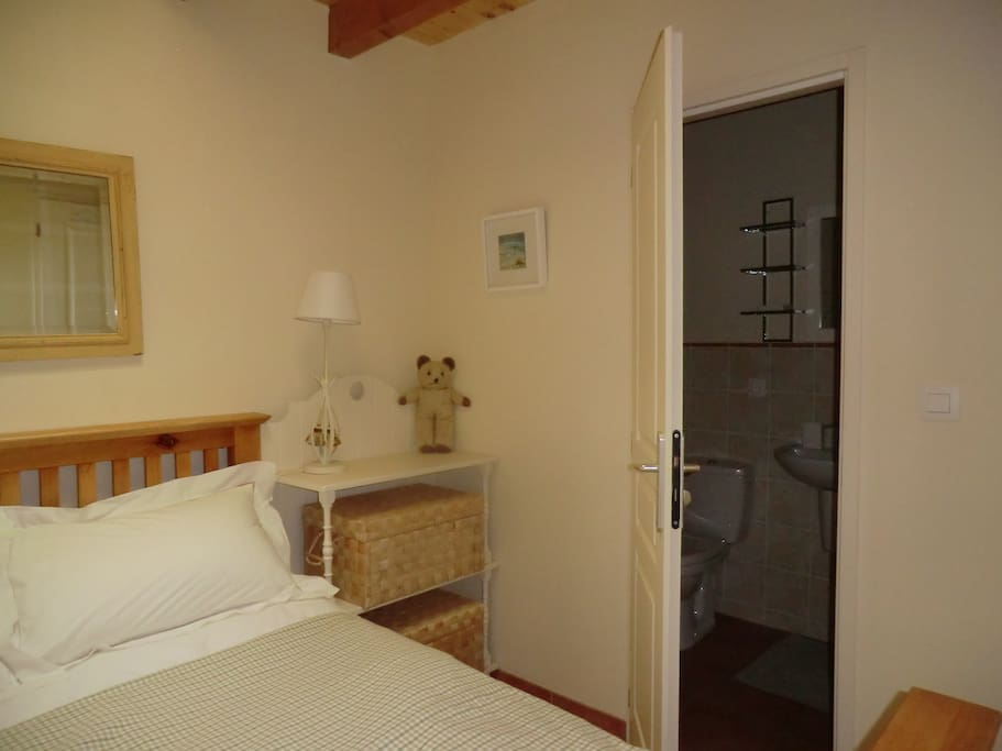 Single room with double bed and large shower.