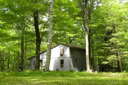 Birch Cabin: A Secluded Retreat - Chatham