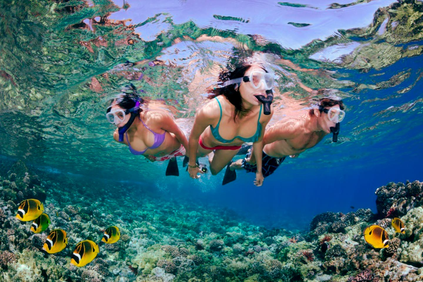 Exotic snorkeling time- group