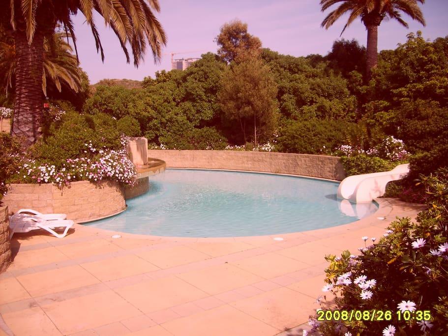 Third Pool
