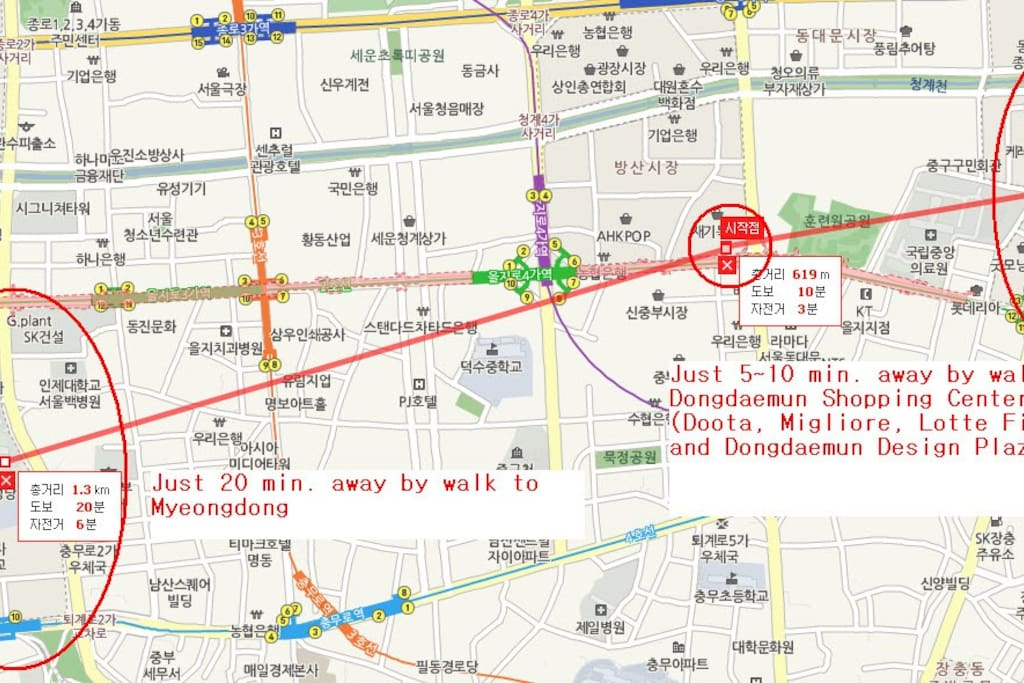 Close to Dongdaemun & Myeong-dong (The most famous shopping sites in Korea)