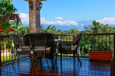 Beautiful 2 bedroom home in San Isidro - San Isidro de El General - House