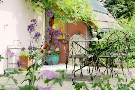 Gîte L'Alchémille - House