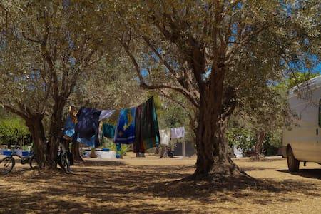 Camping Leros - Σκηνή