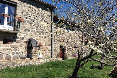 Gîte de charme en haute Ardèche - Saint-Alban-en-Montagne - House