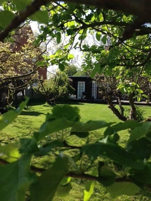Stor aflukket have med frugttræer og legehus i træ