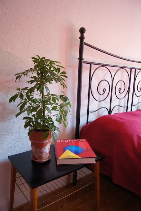 Room in charming central apartment!