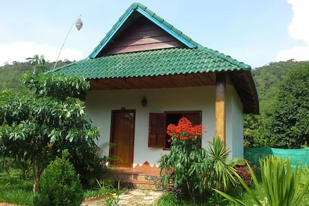 bungalows khmer 30m2 tout confort - Krong Kaeb - Other