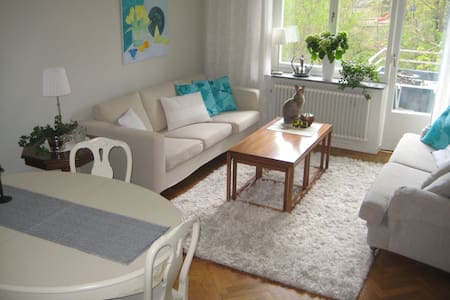 Very nice and bright apartment - Apartment