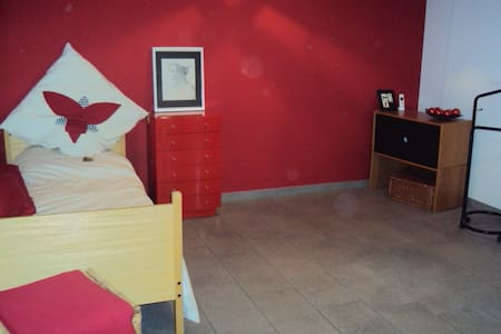 spacious room with private bathroom - Thalwil - Apartment