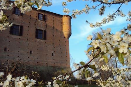 Ancient castle in Monferrato - Castle