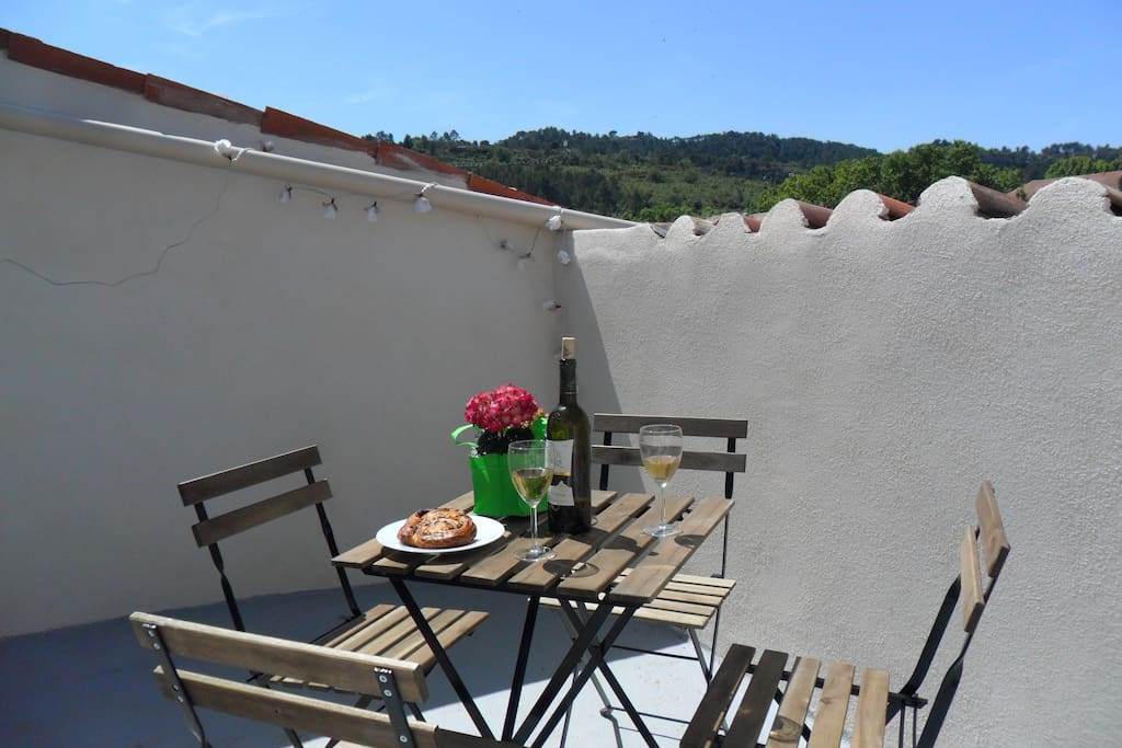 Apartment Fontaine Bagnassol with roof terrace