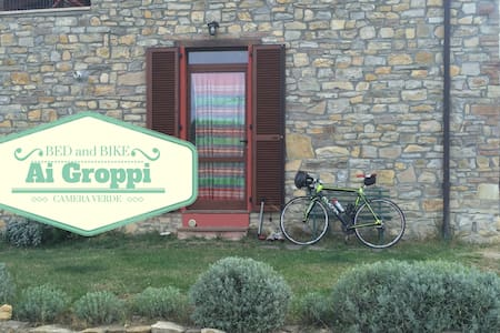 Bed & Bike Ai Groppi Gropparello Camera verde - Bersani