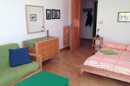 Shiny room in Roma. The Green