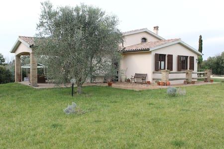 Villa Capalbio mare - Villa