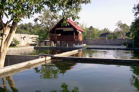 Rumah Singgah Diatas Kolam Ikan