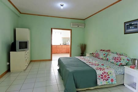 Cozy 1 Bedroom with Kitchen Incld - Beanfield - Pis
