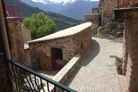 belle petite maison - Tralonca