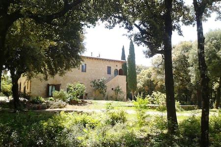 Ripa, casale nel bosco vicino Siena - Apartmen