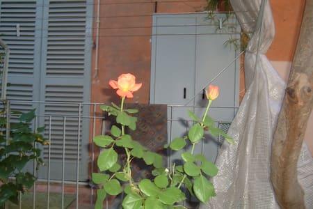 Iris blu - Alessandria - Wohnung