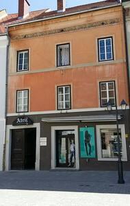 Atrium B apartment - Wohnung