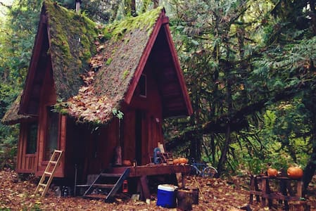 Rustic Cabin in Mossy Woods