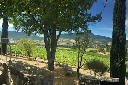 Résidence de charme au milieu des vignes - Sainte-Jalle - Dom