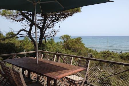Amazing villa on the beach Tuscany - Castiglione della Pescaia