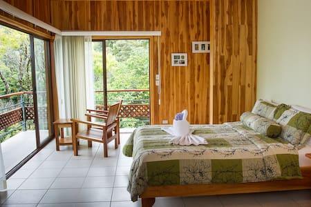 Hotel Ficus Lodge