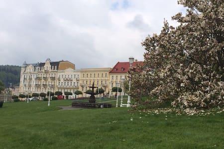 Nice apartment in the centre - Mariánské Lázně - Wohnung
