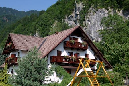 Nice family guesthouse near Bled.. - Bohinjska Bela