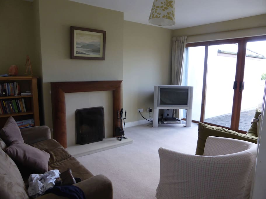 TV room with open fire and extra sofa bed