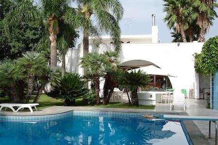 Cuore di palme sea and pool - Bed & Breakfast